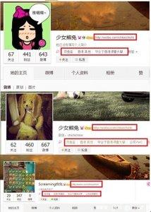 网秦遭泄密普华员工频改名删三年微博毁证据