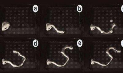 最新发现通过编程可以控制液体金属位置和形状