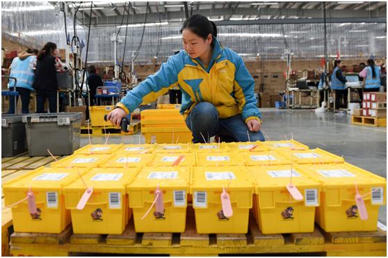 AGV让拣选员步数垫底 苏宁双11发货及时率98.7%