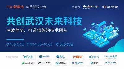 共创中国武汉未来科技,打造精英的技术团队