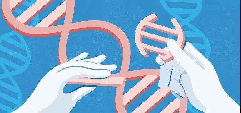 与时间生死赛跑:SMA罕见病基因疗法背后的故事