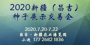 2020中国新疆(昌吉)种子展示交易会-7月20日