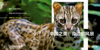 """戴尔携《中国国家地理》发布""""发现中国之美""""摄影大赛评选结果"""